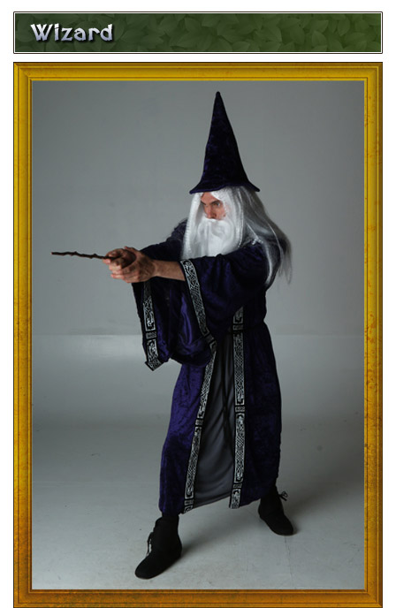 Renaissance Wizard Costume Idea