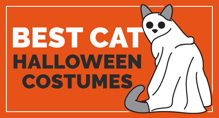 Best Cat Halloween Costumes