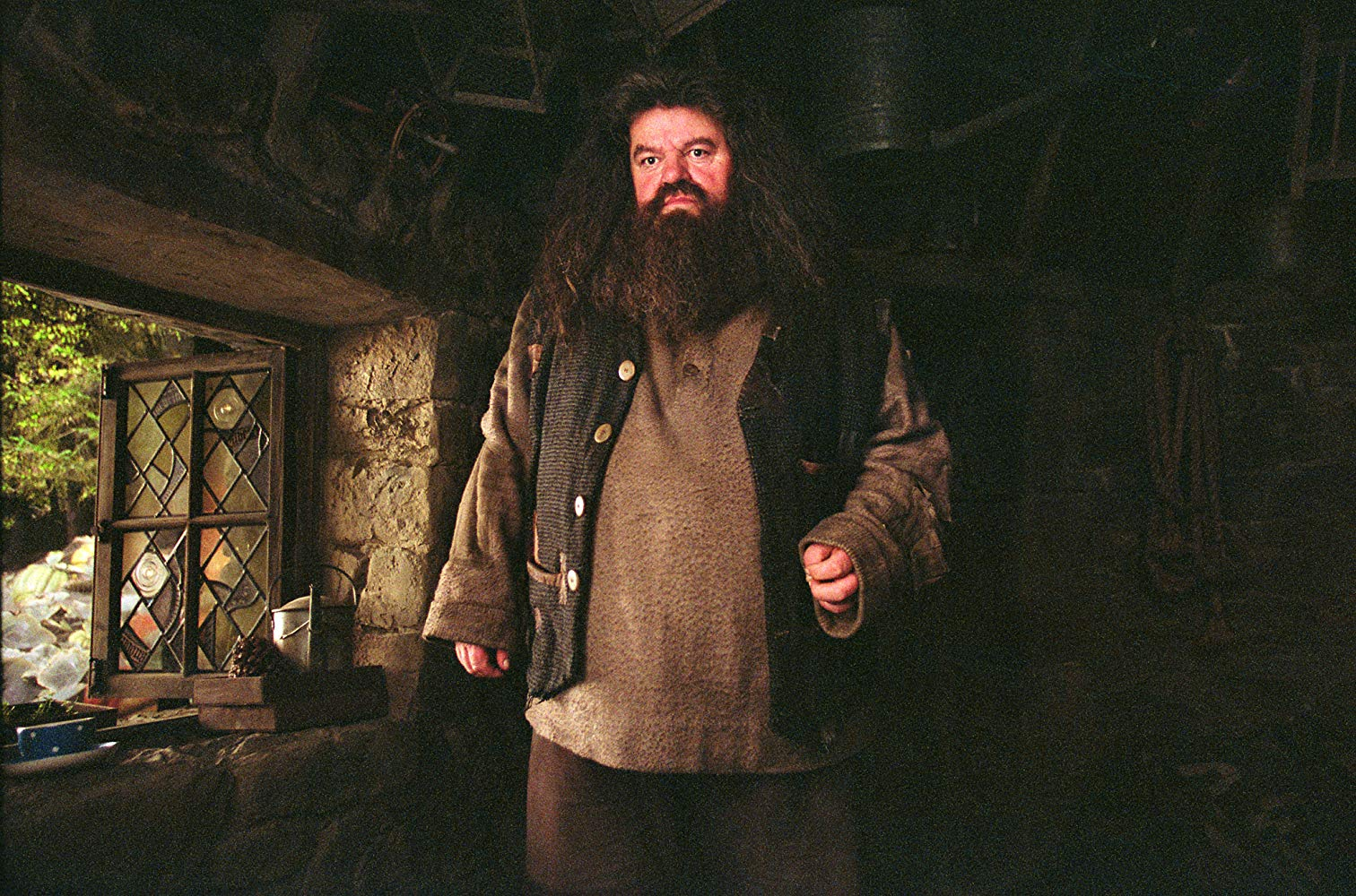 Hagrid from Harry Potter