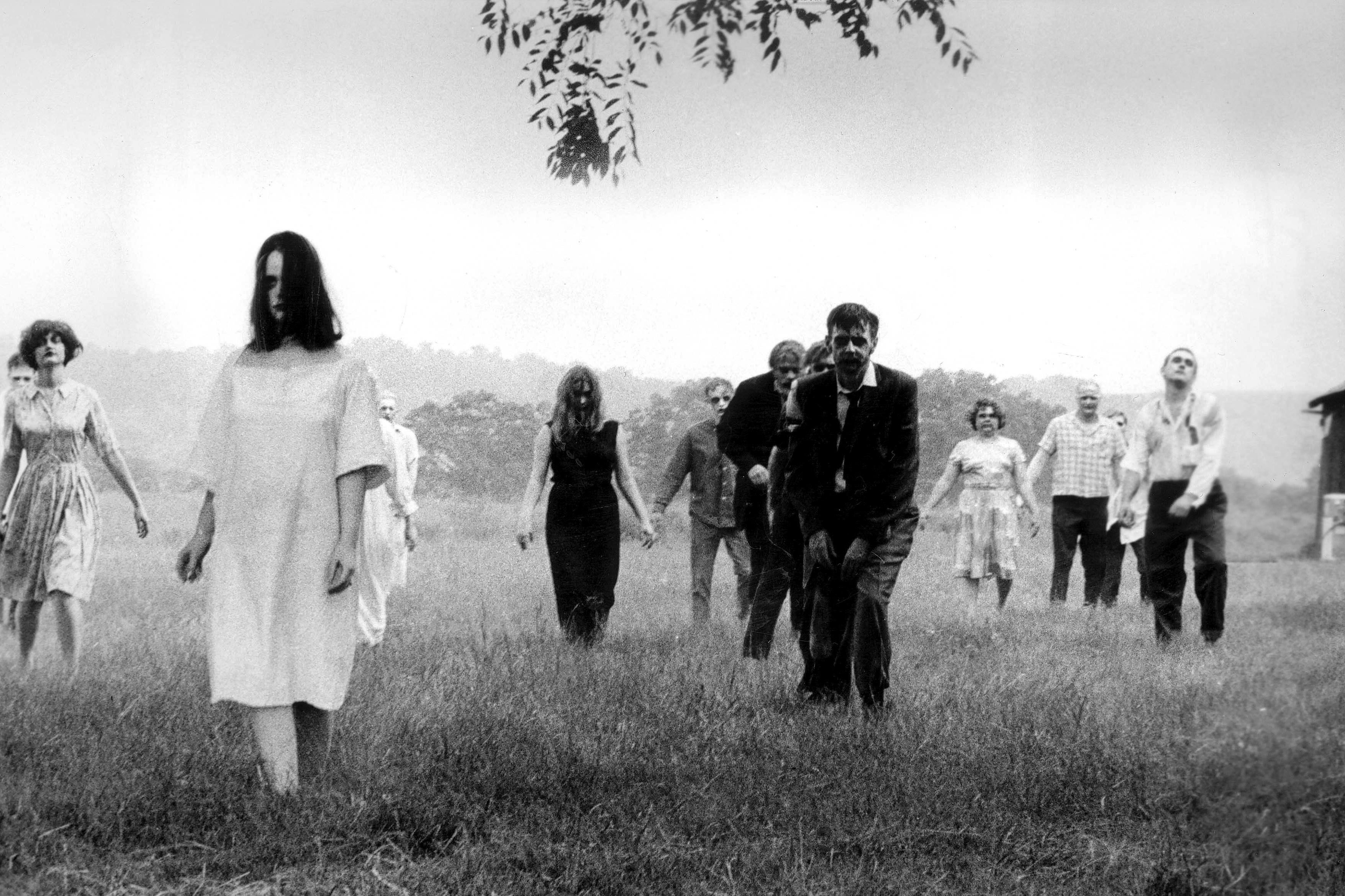 Night of the Living Dead / Dawn of the Dead Romero Zombies