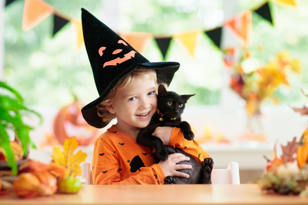 Cat and Child Halloween Photo
