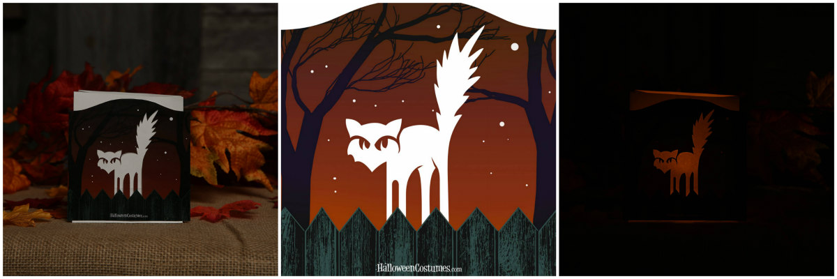 Halloween Cat Luminary
