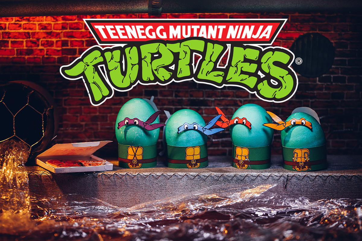 Ninja Turtles Egg Costumes