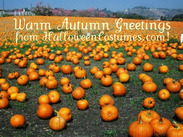 Warm Autumn Greetings from HalloweenCostumes.com