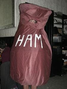 Ham costume