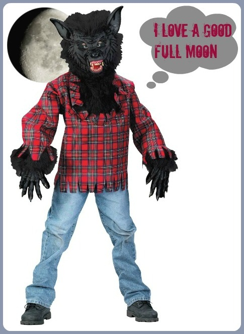 Werewolf Costume Idea Teenage