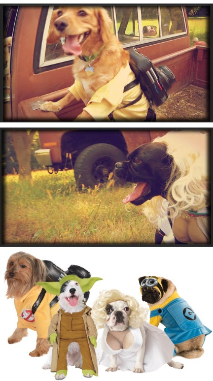 Pop Culture Dog Costume Ideas