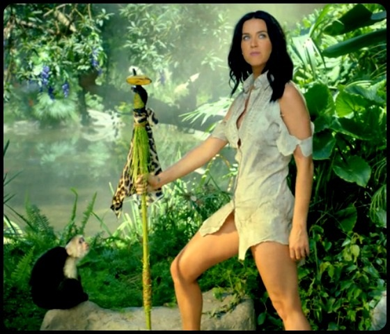 Reference Photo Katy Perry Spear
