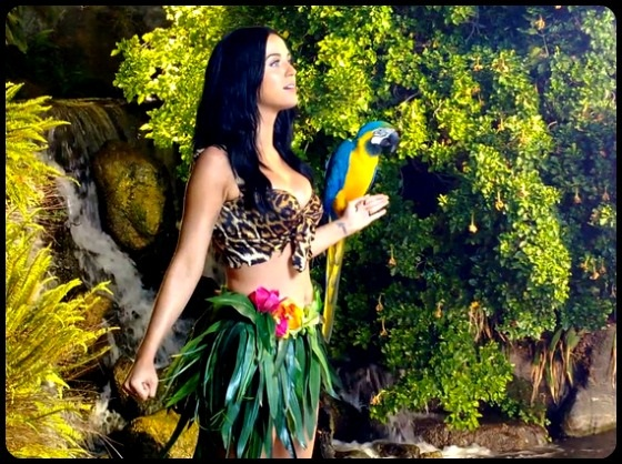 Roar Katy Perry Video Still with parrot