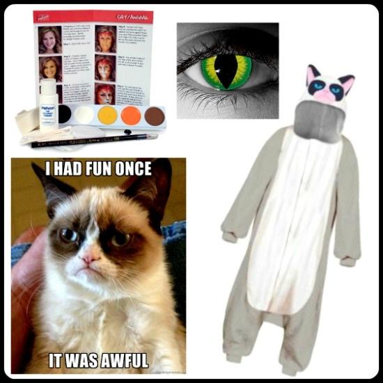 DIY Grumpy Cat Costume Idea