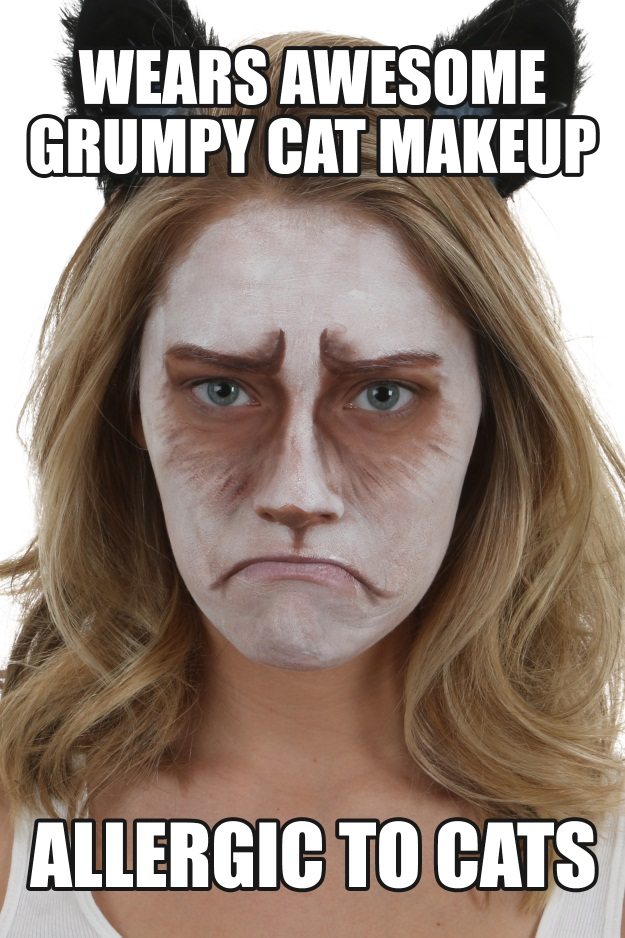 Grumpy Cat Makeup Tutorial Meme