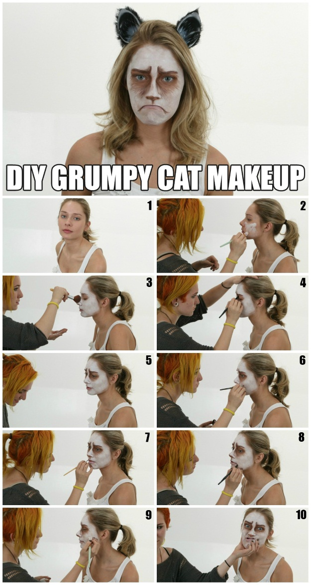 How to do Grumpy Cat Makeup