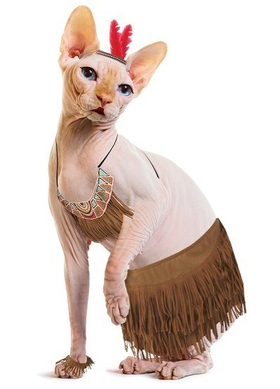 Meow! Purrfect Native American Cat Costume