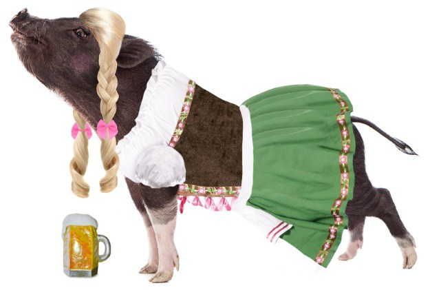 Pot Bellies Up German Beer Girl Pig Costume