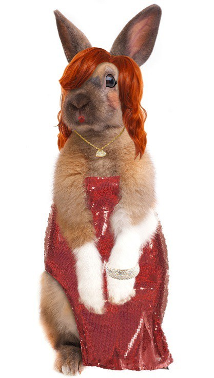Scandalous Jessica (Literally A) Rabbit Costume