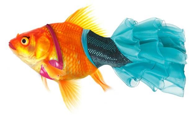 Magical Mermaid Fish Costume