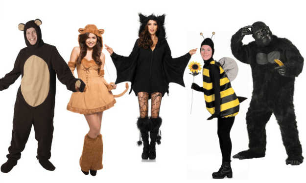 Plus Size Animal & Insect costumes.png