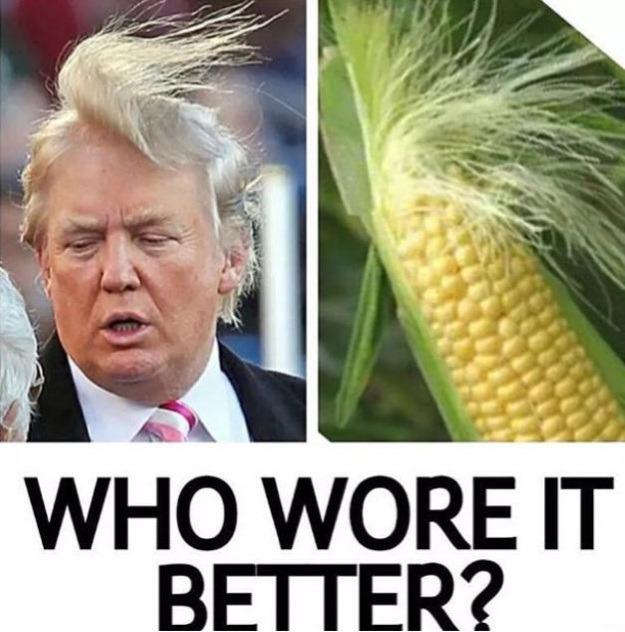 who wore it better donald trump corn meme