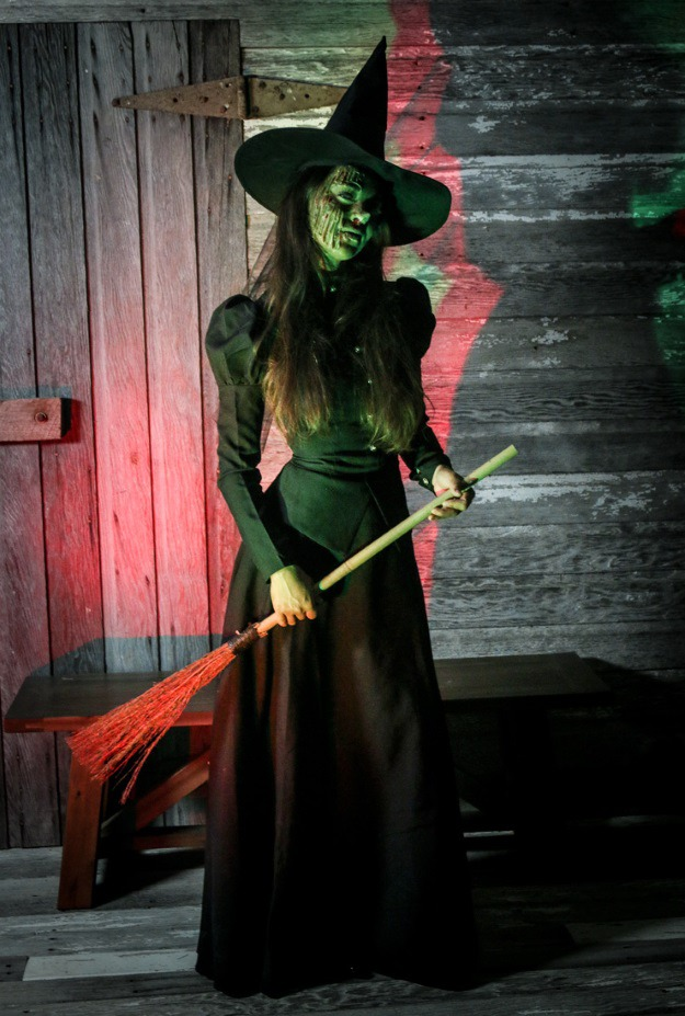 Wicked Witch Of The East Halloween Costume