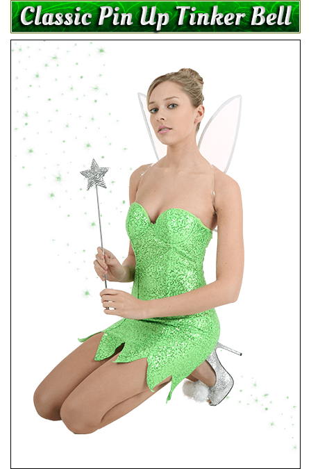 Classic Pin Up Tinker Bell Costume