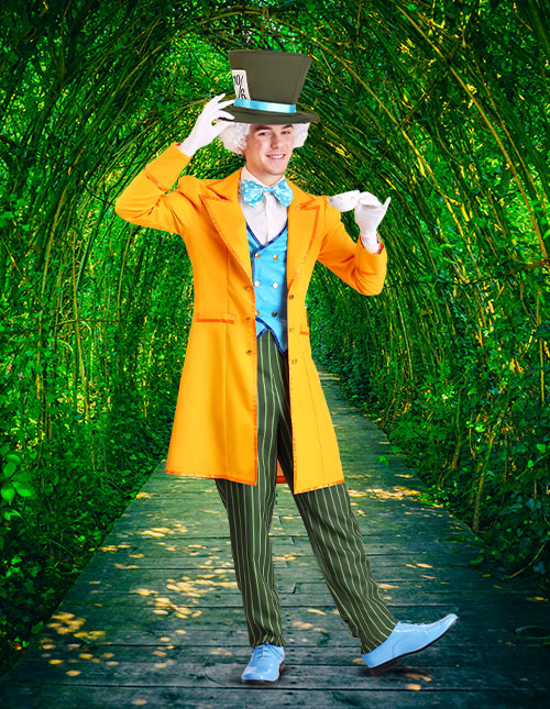 Adult Mad Hatter Costumes