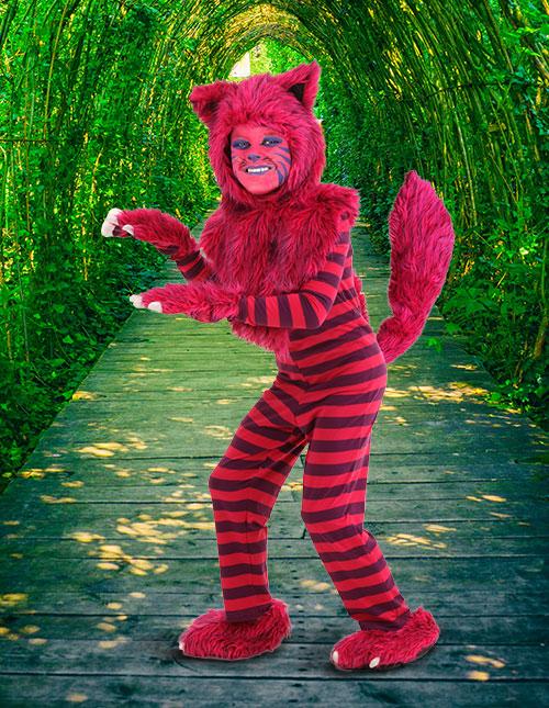 Cheshire Cat Costume for Kids