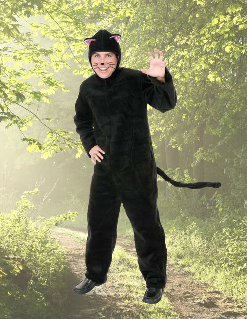 Men's Cat Costume