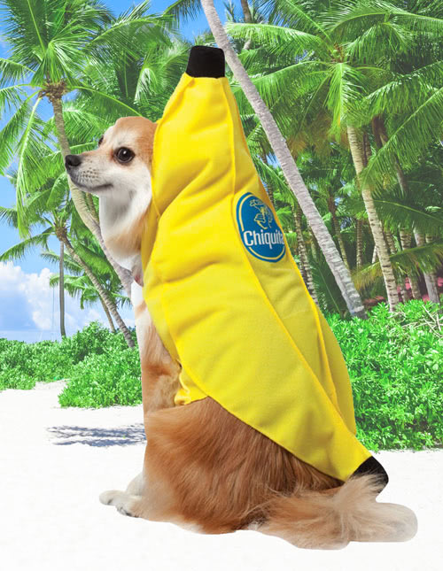 Dog Banana Costume