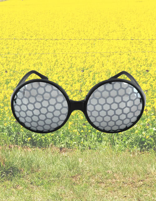 Bee Bug Eyes Sunglasses