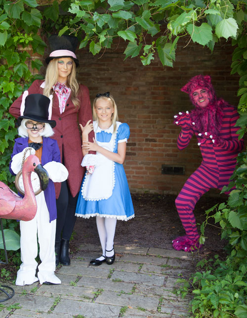 Cheshire Cat Surprise