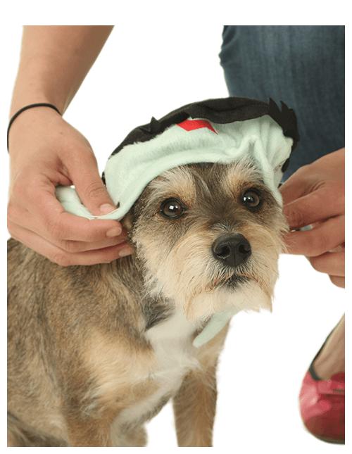 Ears in Head Piece