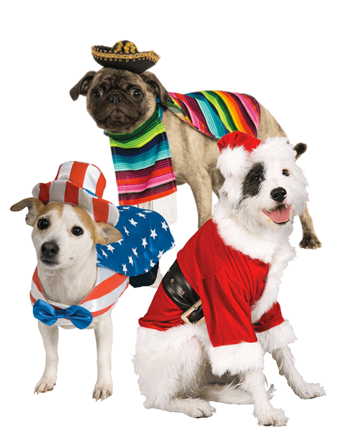 Holiday Dog Costumes