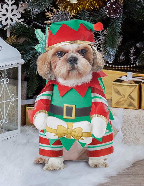 Dog Elf Costume