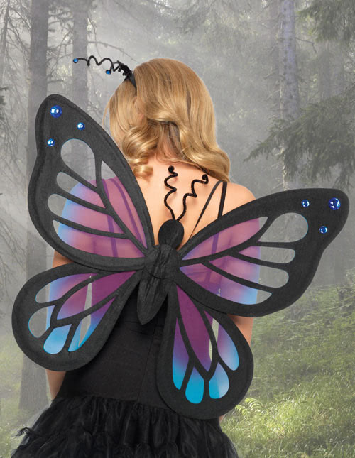 Fairy Wings Costume