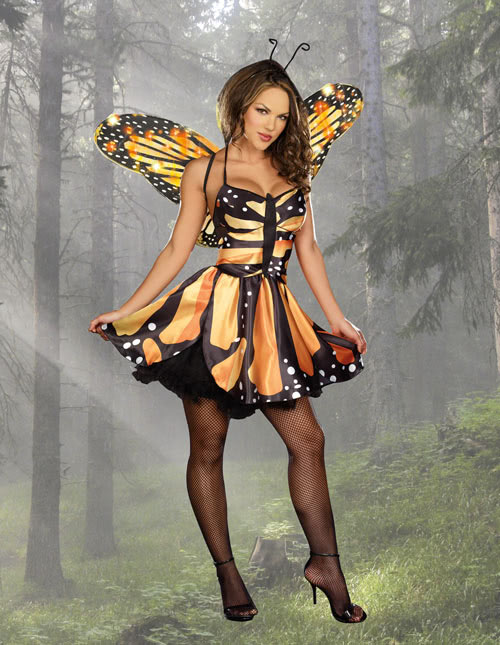 Sexy tooth fairy costumes