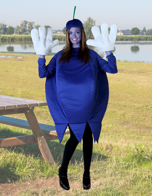 Blueberry Costume  sc 1 st  Halloween Costumes & Food Costumes - Adult Kids Food and Drink Halloween Costume Ideas