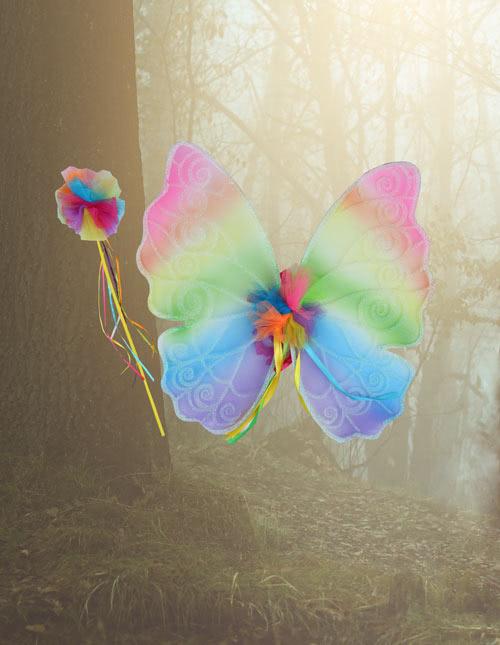 Rainbow Wings & Wand
