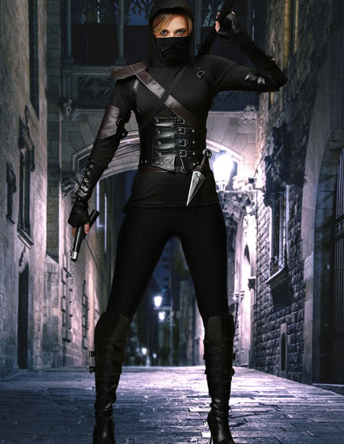 Women's Assassin Costume