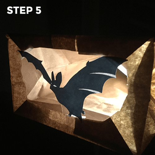 Flashlight Silhouettes - Step 5