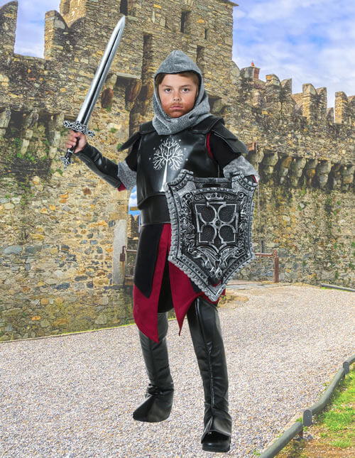 Knight Costumes Medieval Costumes Halloween Costumes