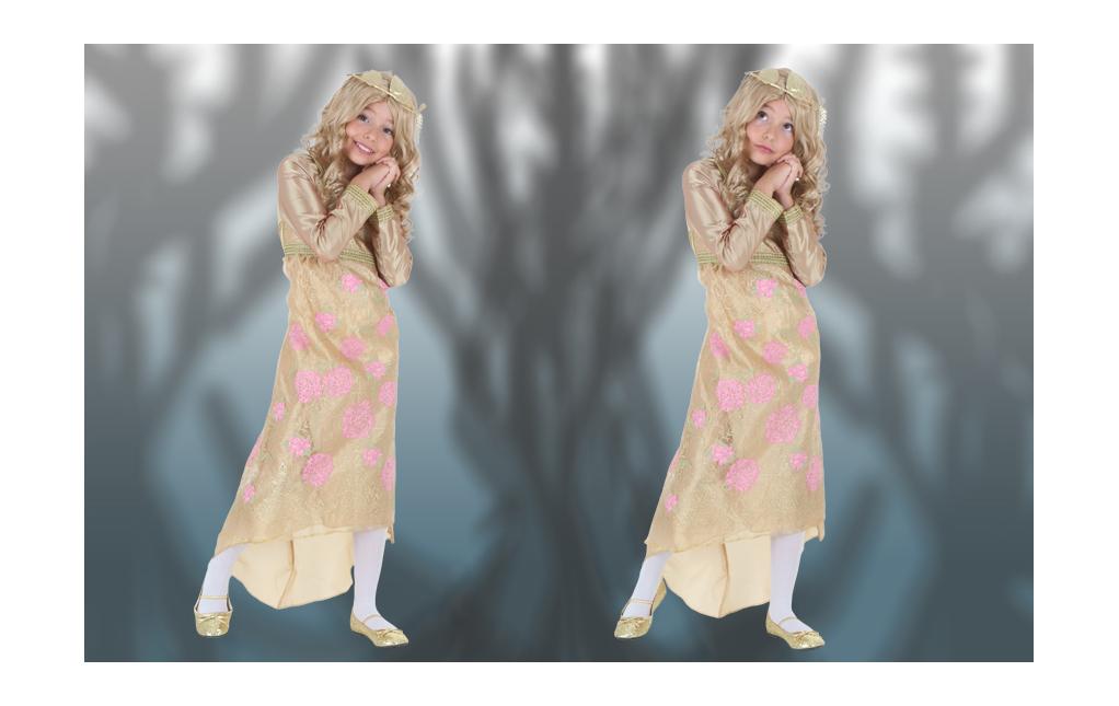 Princess Aurora Corornation Gown