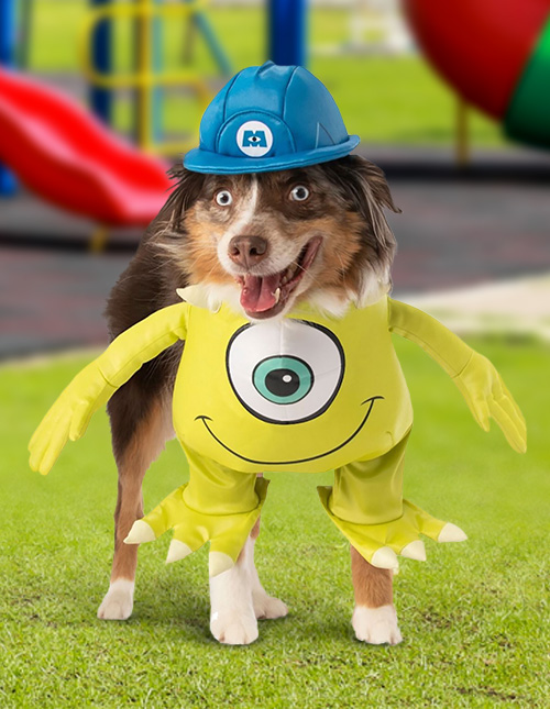 Monsters Inc. Dog Costume