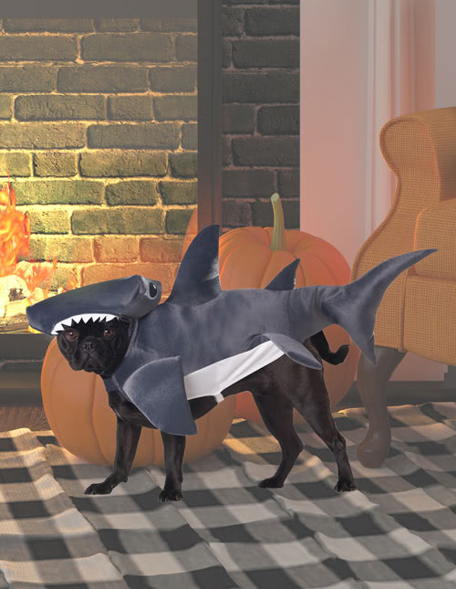 Shark Puppy Costume