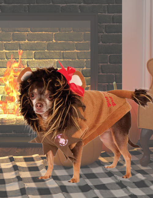 Cat Lion Costume & Pet Costumes - Cat u0026 Dog Halloween Costumes - HalloweenCostumes.com