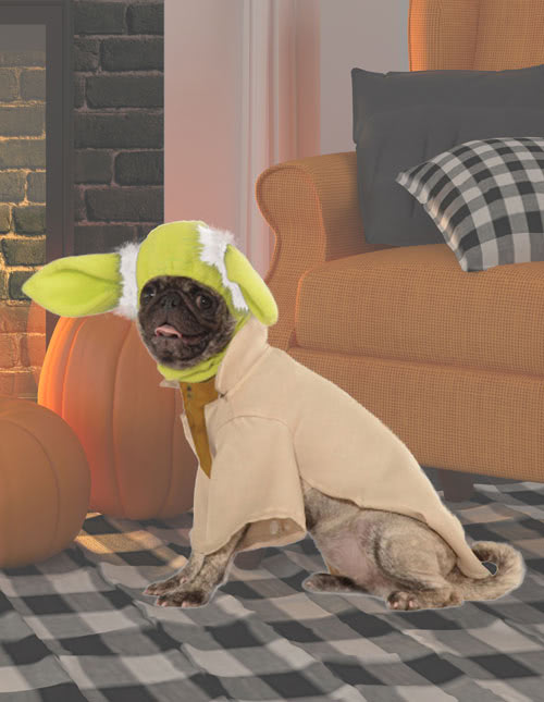 Yoda Dog Costume & Pet Costumes - Cat u0026 Dog Halloween Costumes - HalloweenCostumes.com