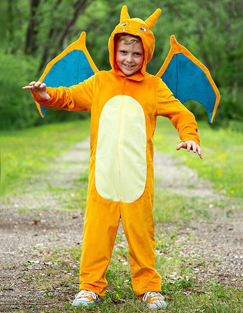 Charizard Costumes