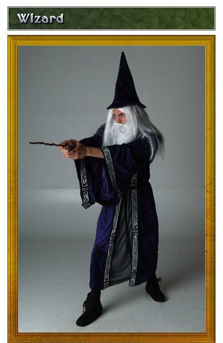 Renaissance Wizard Costume Idea