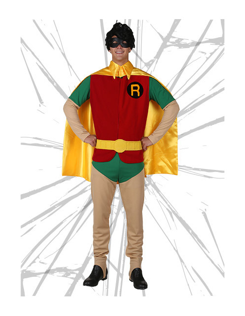 Robin Hero Costume