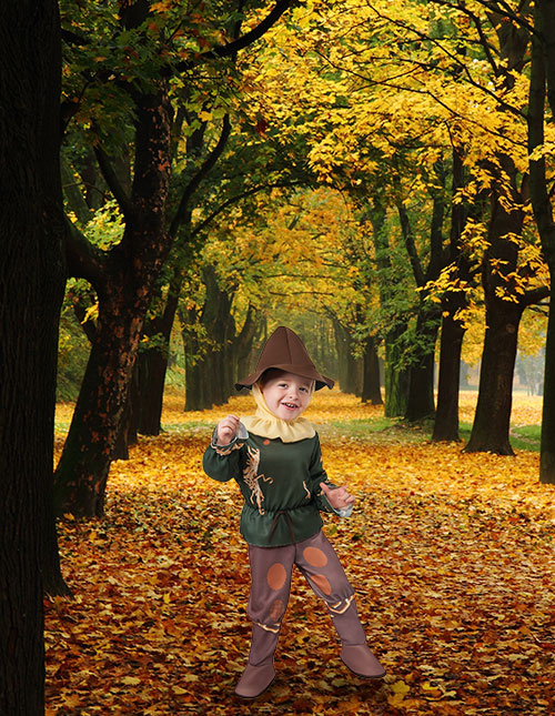 Wizard of Oz Scarecrow Costume for Toddler