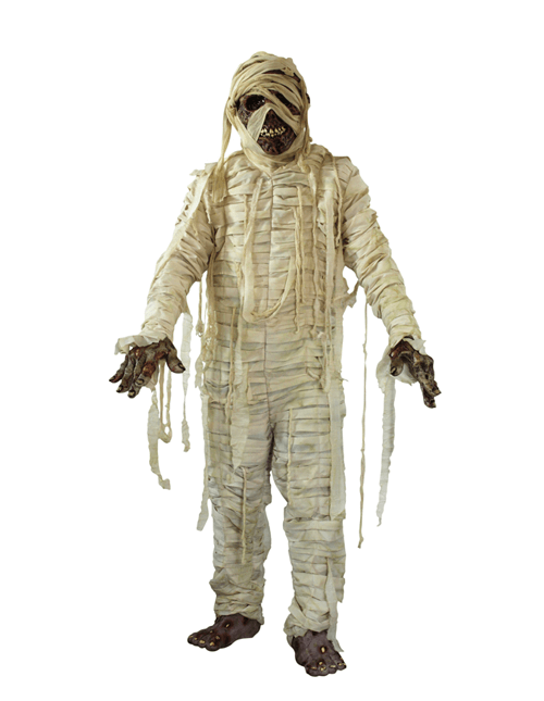 Scary Mummy Costume
